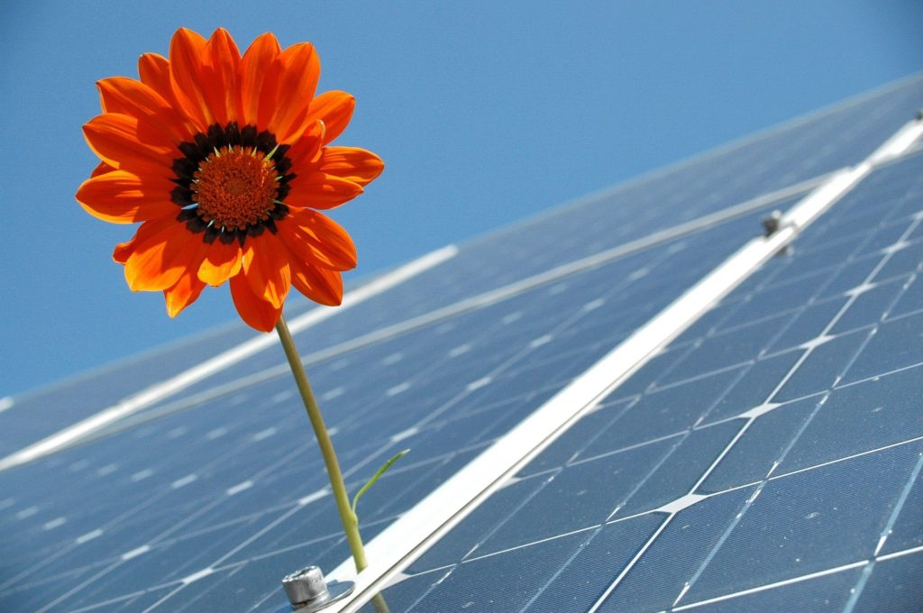 Great Developments in the Solar Panel Installation Industry
